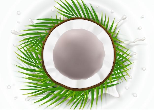 Broken coconut in milk splash Free Vector