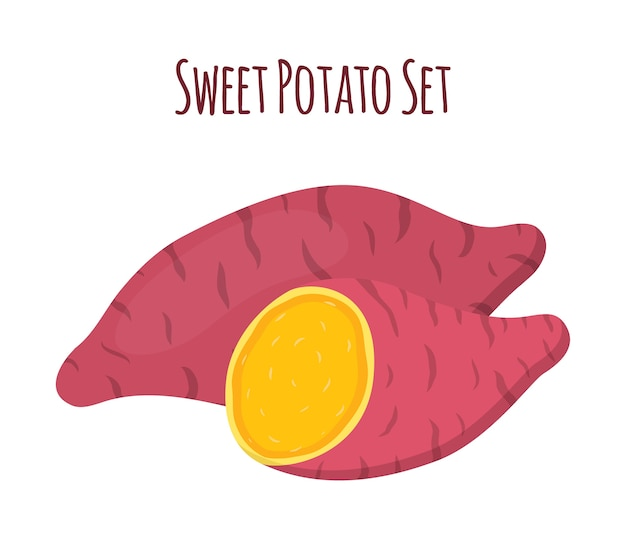 Brown batat, sweet potato and slices. vegetable Premium Vector