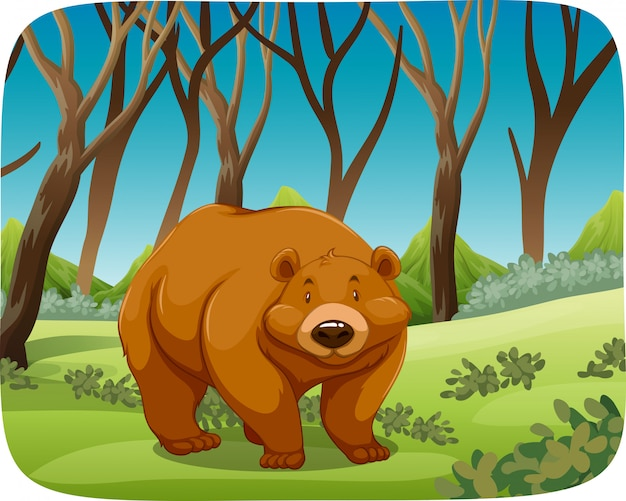 Brown bear in nature scene Free Vector