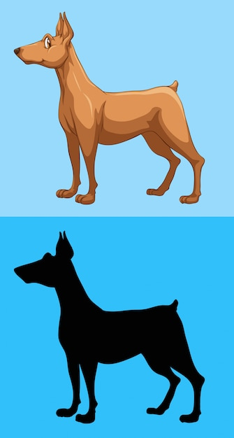 Brown dog on blue background Free Vector
