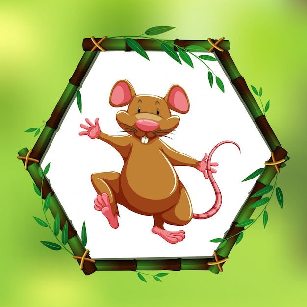 Brown rat in bamboo frame Free Vector