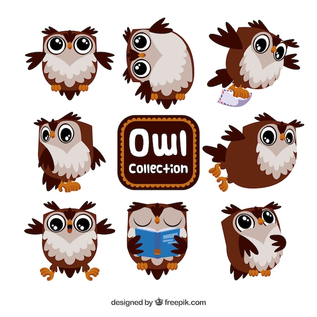 Brown and white cartoon owl set Free Vector