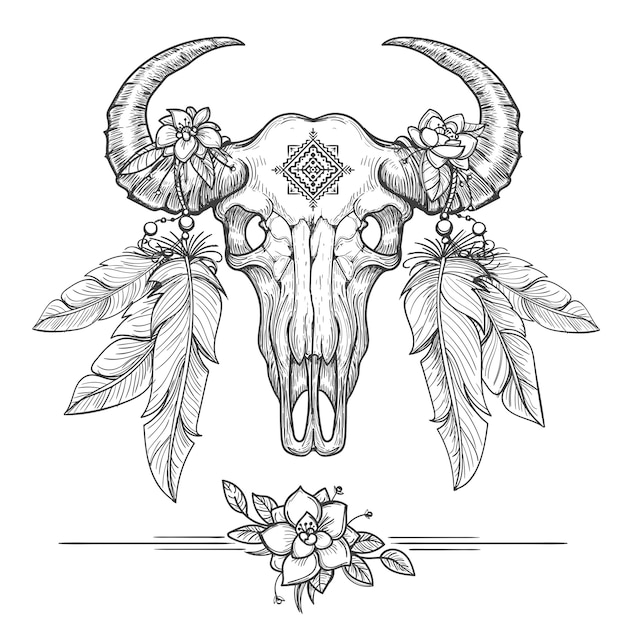 Buffalo or american bison skull Premium Vector