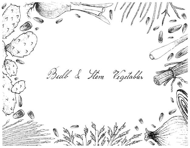 Bulb and stem vegetables frame on white background Premium Vector
