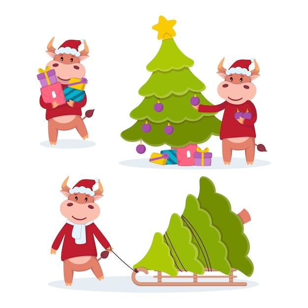 Бык везет подарки, тащит на санках и украшает елку. год быка. набор счастливых коров. новый год и счастливого рождества иллюстрации. Premium векторы