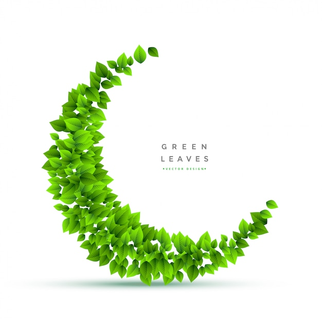 Bunch of leaves in crescent shape Free Vector