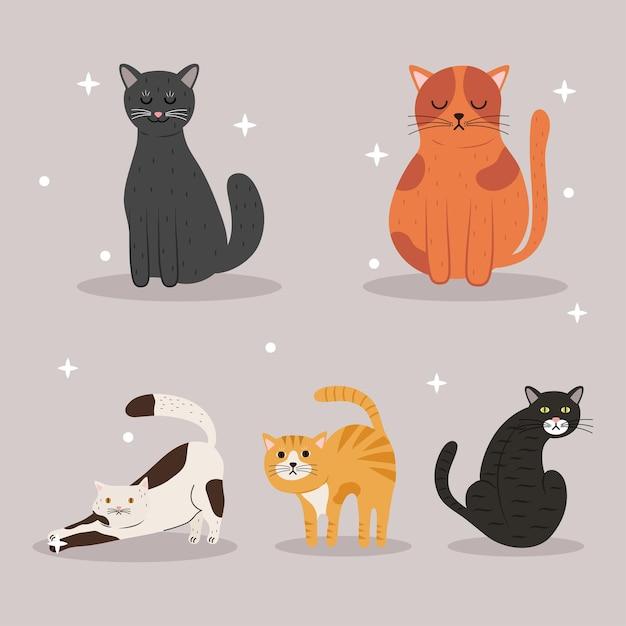 5 마리의 고양이 Differents 색상 마스코트 캐릭터 번들 프리미엄 벡터