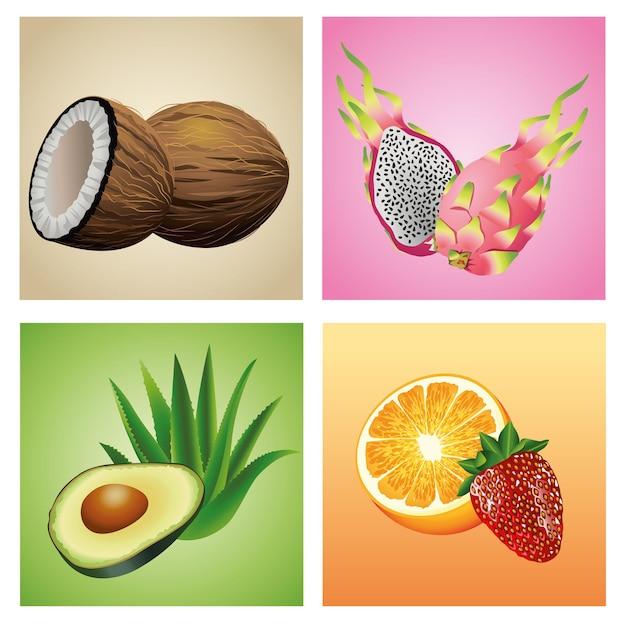 Связка из шести тропических фруктов и растений набор иконок иллюстрации Premium векторы