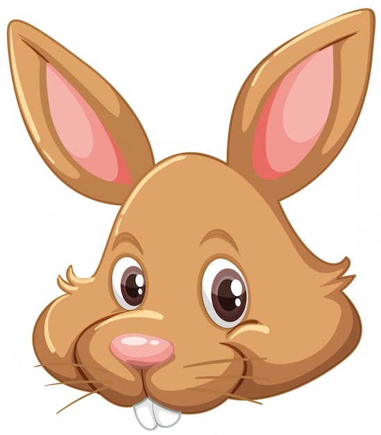 Bunny face on white background Free Vector