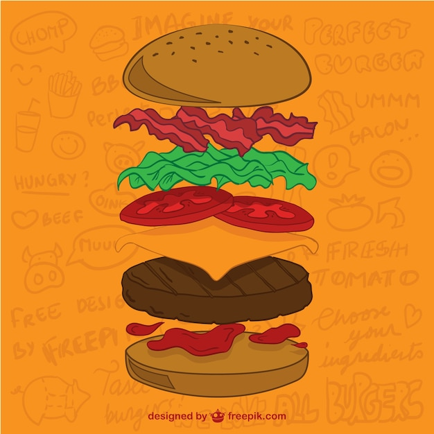Burger ingredients Free Vector