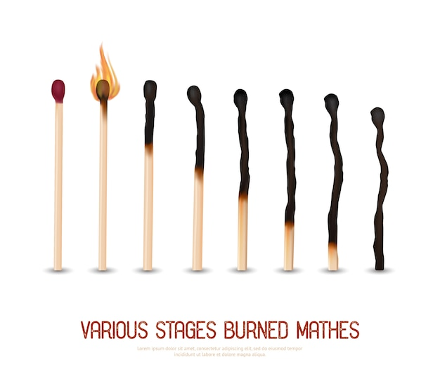Burned matches set Free Vector