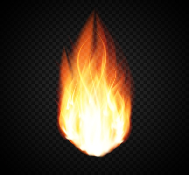 Burning fire special light effect on transparent Premium Vector