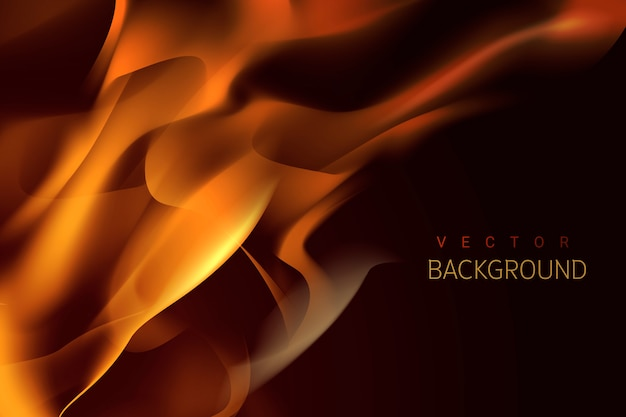 Burning flame background Free Vector