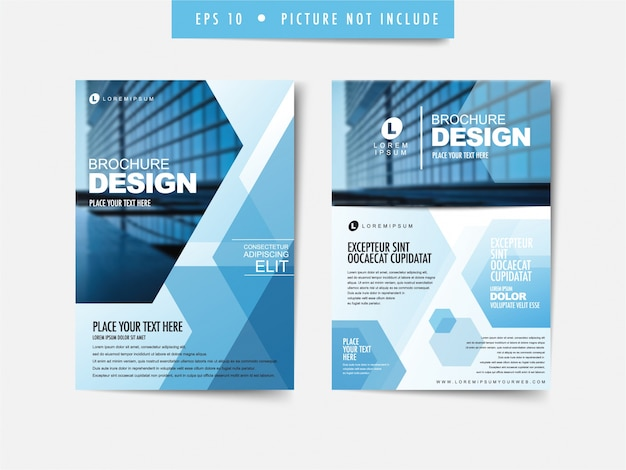 business brochure premium vector