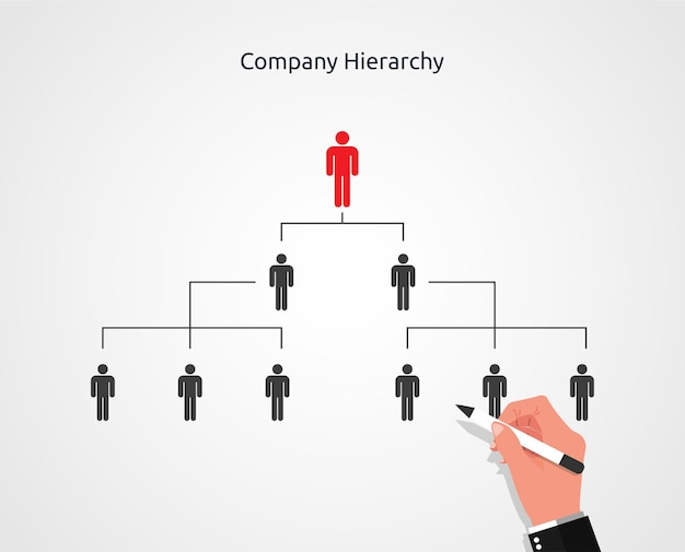 Businessman hand drawing of company or organization hierarchy Premium Vector