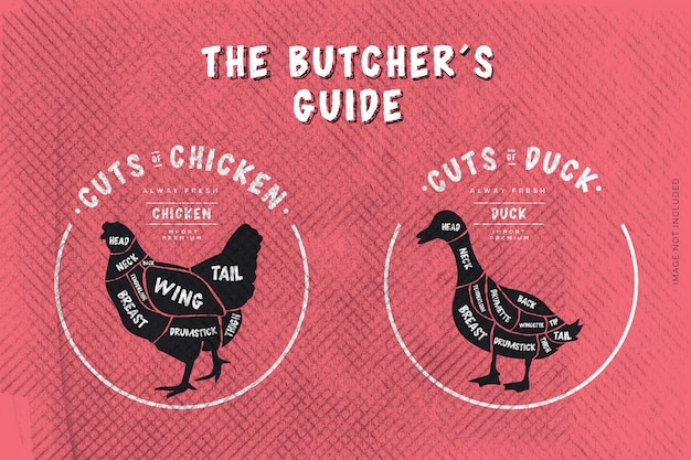 The butcher's guide, cut of beef Premium Vector