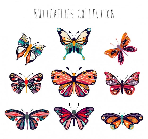 Butterflies collection with hand drawn decorative elements Premium Vector