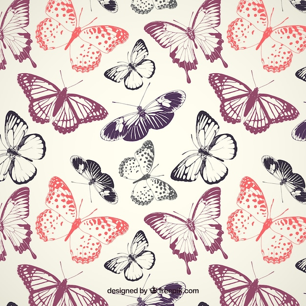 Butterflies Pattern Vector Premium Download Custom Butterfly Pattern