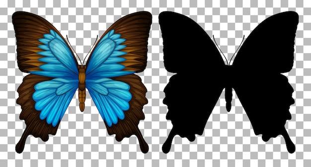 透明な背景に蝶とそのシルエット 無料ベクター