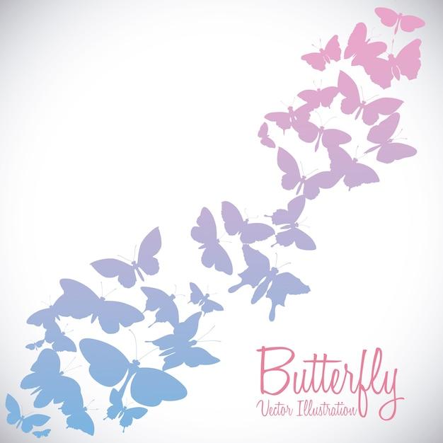 Butterfly design over white background vector illustration Premium Vector