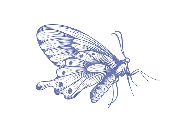 Butterfly icon symbol vector illustration Premium Vector