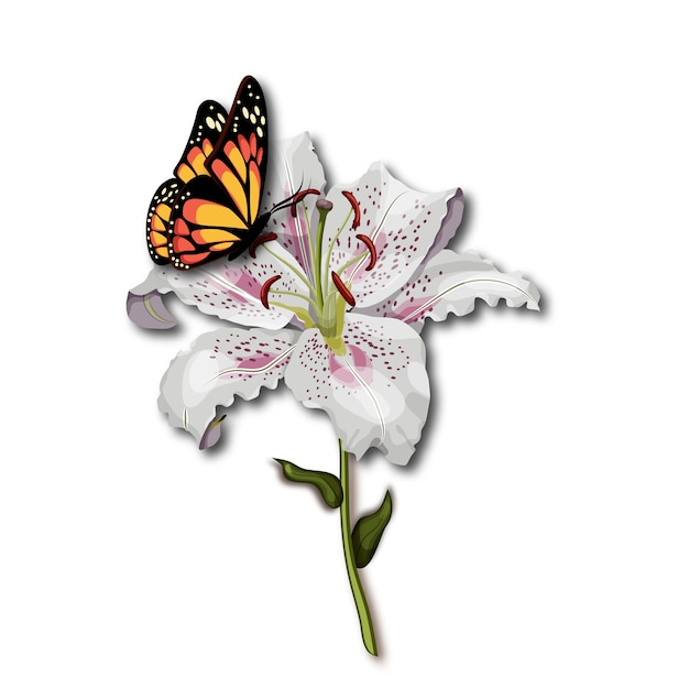 dde7f54f9 Butterfly monarch sitting on the white lily flower Vector | Premium ...