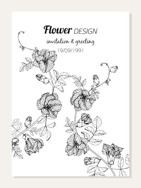 Butterfly pea flower frame drawing illustration Vector   Premium ...