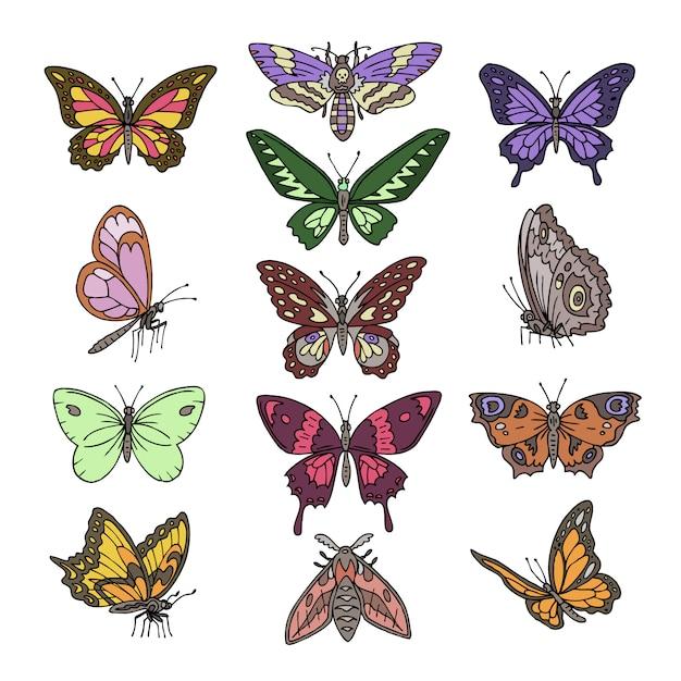 白い背景に分離された装飾と美しい蝶の翼飛ぶイラスト自然な装飾セットのために飛んでいる蝶ベクトルカラフルな昆虫 Premiumベクター