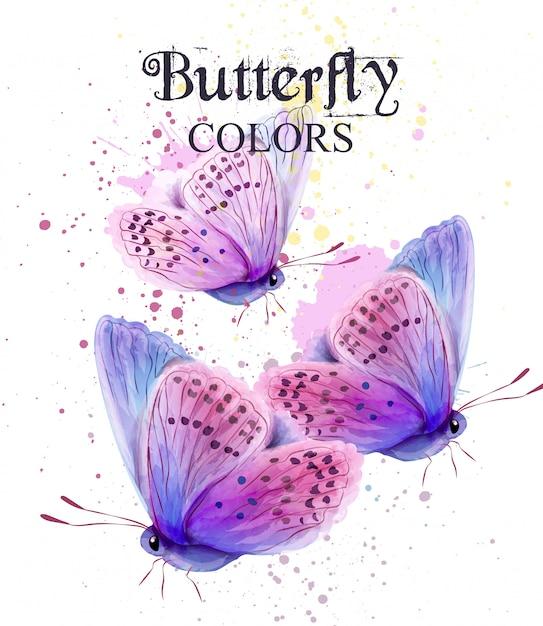 나비 수채화 카드 프리미엄 벡터