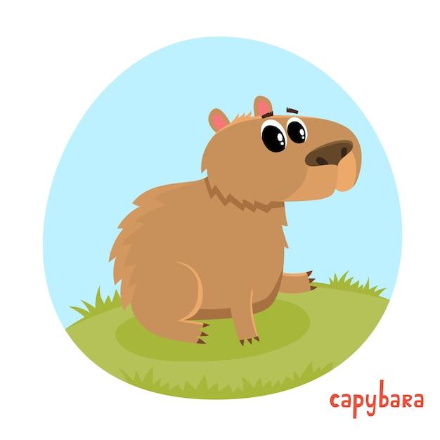 漫画のスタイルのカピバラ。白い背景で隔離の野生動物のイラスト。かわいい動物園アルファベット、手紙c.雑誌、ポスター、カード、本、webページに使用されるイラスト。 Premiumベクター