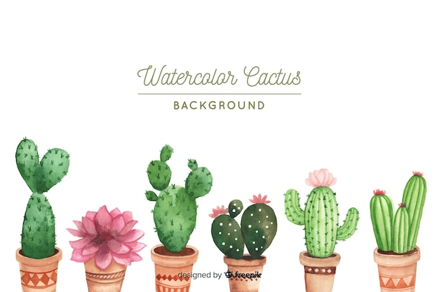 Cactus collection Free Vector