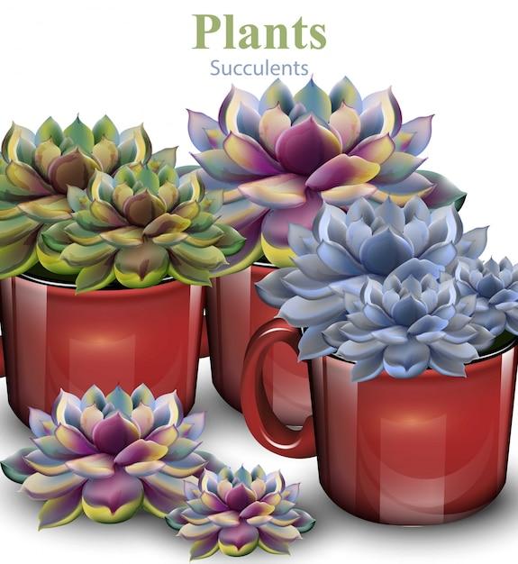 サボテンの花の背景、赤い鉢植えの植物 Premiumベクター