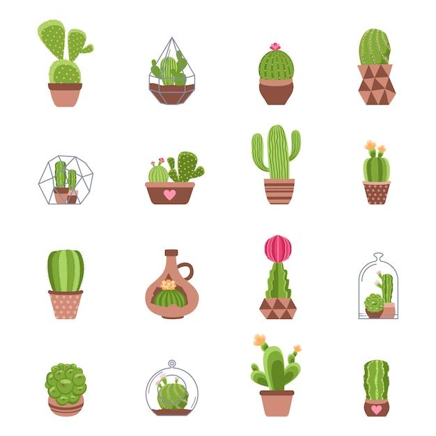 Cactus icons set Free Vector
