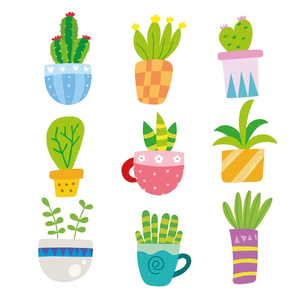 Cactus illustrations collection Free Vector