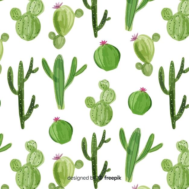 Cactus pattern Premium Vector