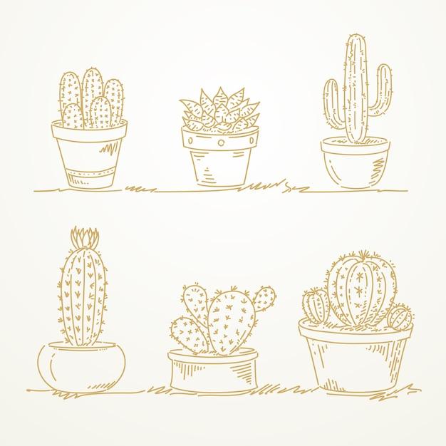 Cactus in pot, sketch hand drawn Premium Vector