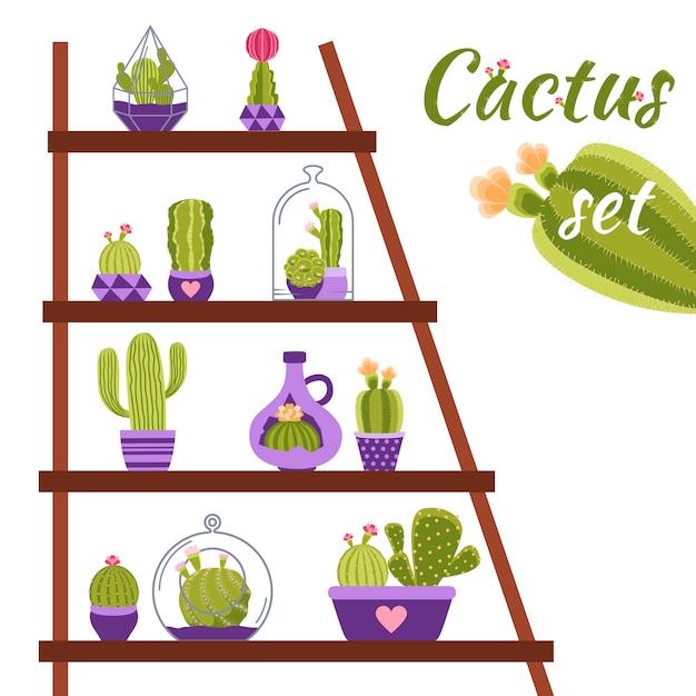 Cactus shelf illustration Free Vector