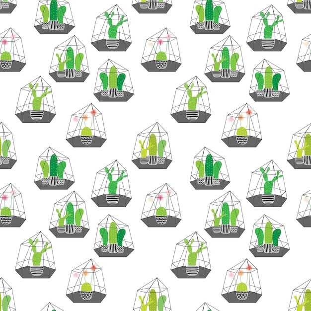 Cactuses in glass terrariums with geometric pattern. vector illustrations for gift wrap design. Premium Vector