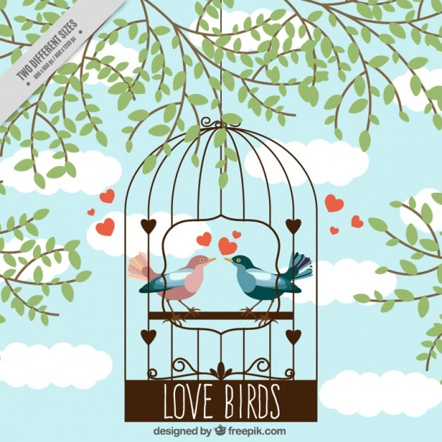 Cage background with birds in love