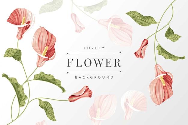 Шаблон фона цветок лилии каллы Premium векторы