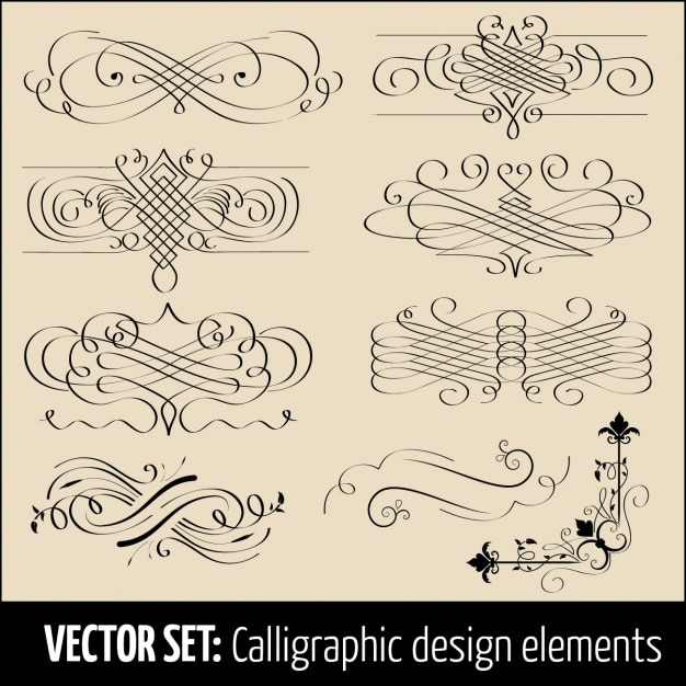Calligraphic design elements vector premium download