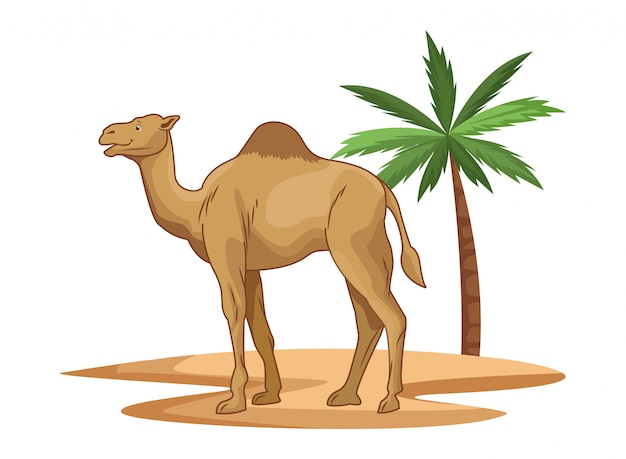 Camel in desert with palm tree cartoon isolated Premium Vector
