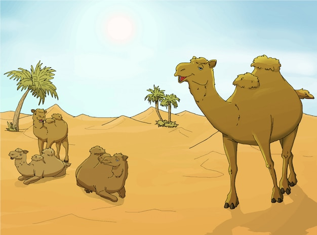 Camels in the desert illustration Premium Vector