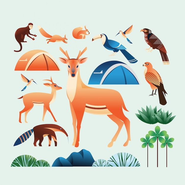 Camp and forest illustration elements Premium Vector