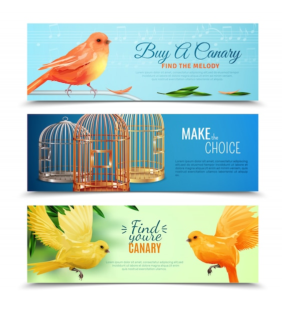 Canary and birdcages banners set Free Vector