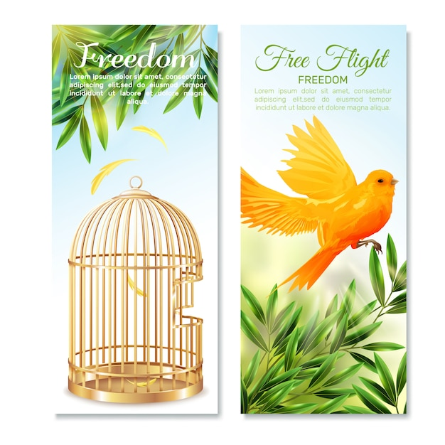 Canary in free flight vertical banners Free Vector