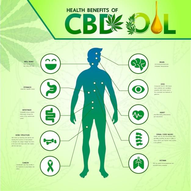 医療イラストの大麻。 Premiumベクター