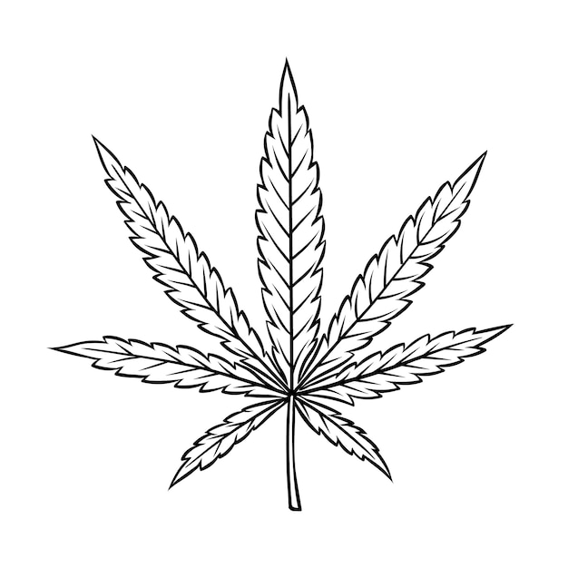 Cannabis leaf in vintage engraved style for smoking or medicine Premium Vector