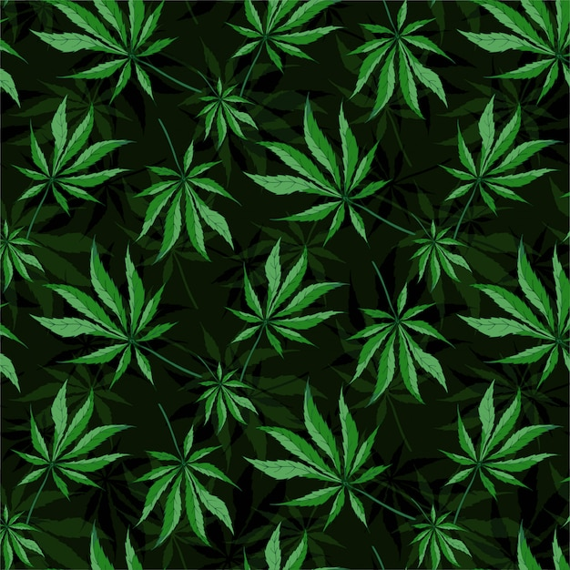 Cannabis leaves seamless pattern Premium Vector