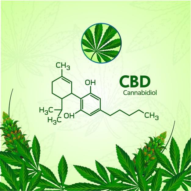 多くの利点のイラストと大麻。 Premiumベクター